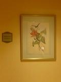 エステルームロビーのお花の絵