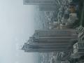 都庁から見たパークハイアット