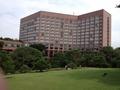 庭園から見たホテル