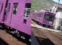 観光に便利な嵐電の紫色の車両 (アップ画像と車両全体)