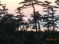 夕陽がちょうどいいタイミングで~♡