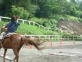馬場内で走ってみる練習中
