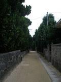 渡名喜村独特の景観