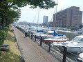 前の川にたくさん停泊のヨット