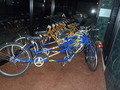 レンタル自転車(2人乗りもある!!!)
