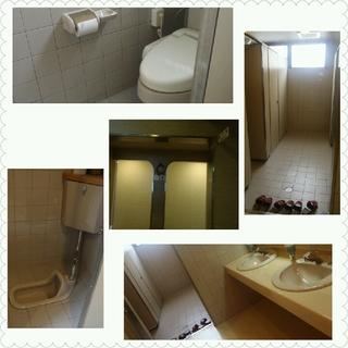 1階 フロアのトイレ
