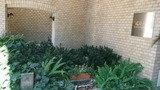 エントランス横の庭