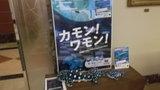 海遊館の宣伝もされています