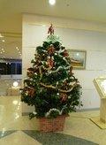 季節のクリスマスツリー