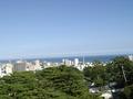 小田原城に近いです