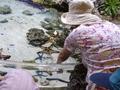 美ら海水族館ではヒトデにも触れました