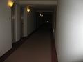 北館廊下。