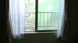 窓からの眺め。