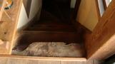 木のぬくもりのある階段。