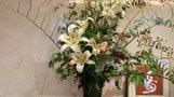 きれいなお花。