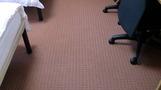 きれいなカーペット。