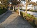 ホテル周辺の道路。