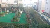 部屋からの眺め。