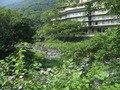大自然の中の旅館。