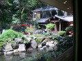 中庭の景色。
