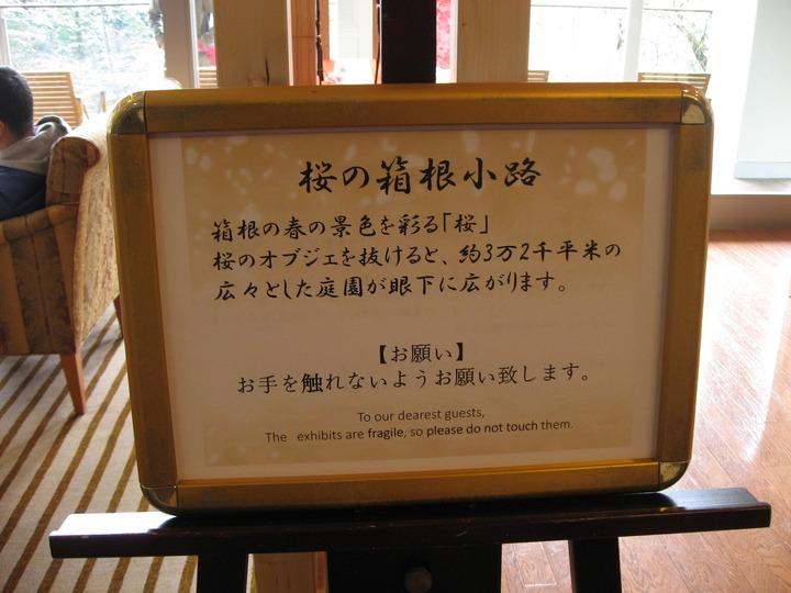桜の箱根小路