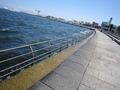 臨港パークの波打ち際