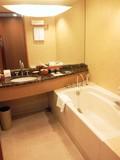 バスルームは十分な広さ。