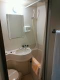 バスルームはユニットタイプ。