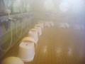 浴場の洗い場