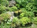 鴎外邸のお庭