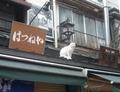 谷中銀座の7匹の猫スポット その1