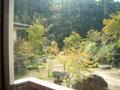 写真クチコミ:浴室からの眺望 2