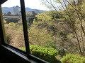 大浴場の脱衣所からの眺望