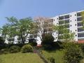 駐車場からのホテルの外観です