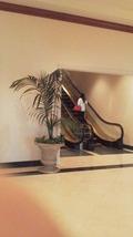 二階へのエスカレーター