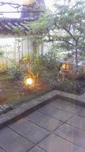 日本料理店の窓の外