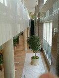 四階からエスカレーターから三階のレストランへ