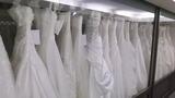 ウエディングドレスがたくさん