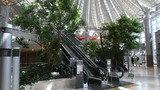 エアロプラザのセンターの吹き抜けの様子