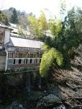 川と樹木に囲まれる客室