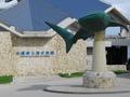 沖縄美ら海水族館に行く人には方角的にいいかも
