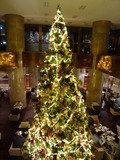 圧巻のクリスマスツリー
