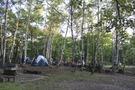 キャンプ民もいっぱい!
