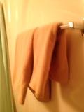 部屋浴室内タオルかけ