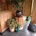 玄関前の花々