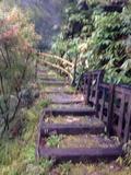 混浴露天への階段
