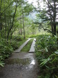上高地自然歩道