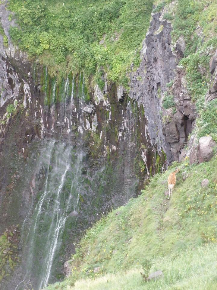 名勝フレべの滝