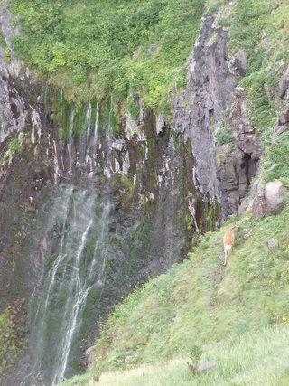 フレべの滝