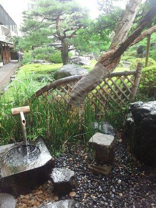ホテルの庭です